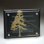 Black Glass Plaque with Glass Layer Employee Awards